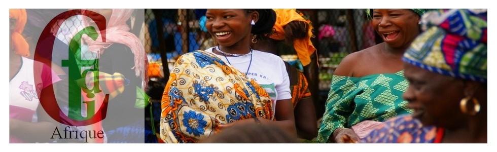 Cfid-Afrique : Conseils et Formations en Ingénierie du Développement - Afrique